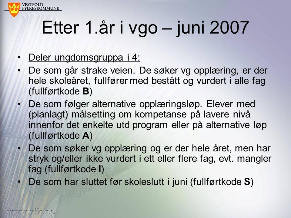 Etter 1.år i vgo – juni 2007 Deler ungdomsgruppa i 4: De som går strake veien.