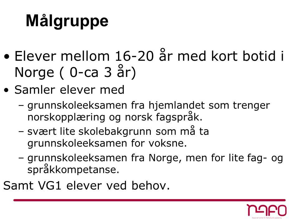 Målgruppe Elever mellom 16-20 år med kort botid i Norge ( 0-ca 3 år) Samler elever med –grunnskoleeksamen fra hjemlandet som trenger norskopplæring og norsk fagspråk.