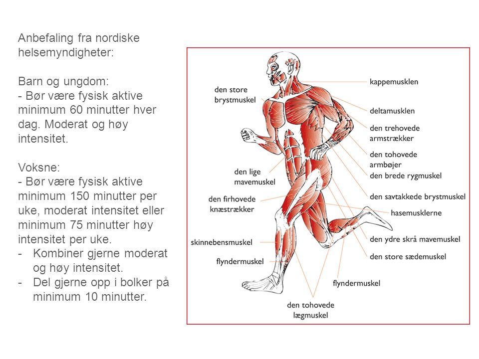 Anbefaling fra nordiske helsemyndigheter: Barn og ungdom: - Bør være fysisk aktive minimum 60 minutter hver dag. Moderat og høy intensitet. Voksne: -