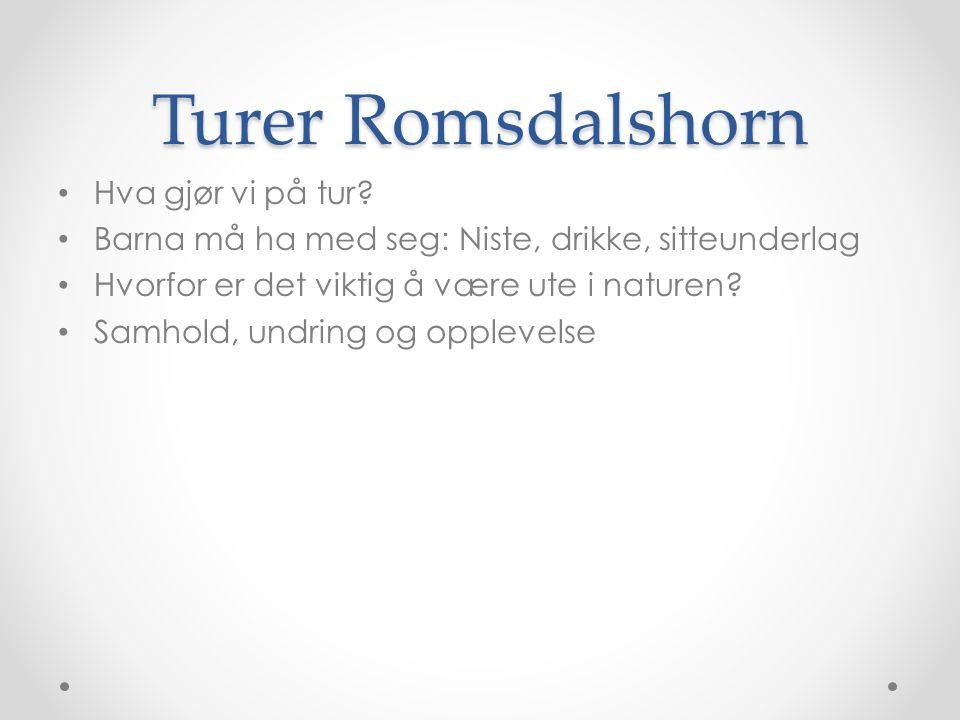 Turer Romsdalshorn Hva gjør vi på tur.