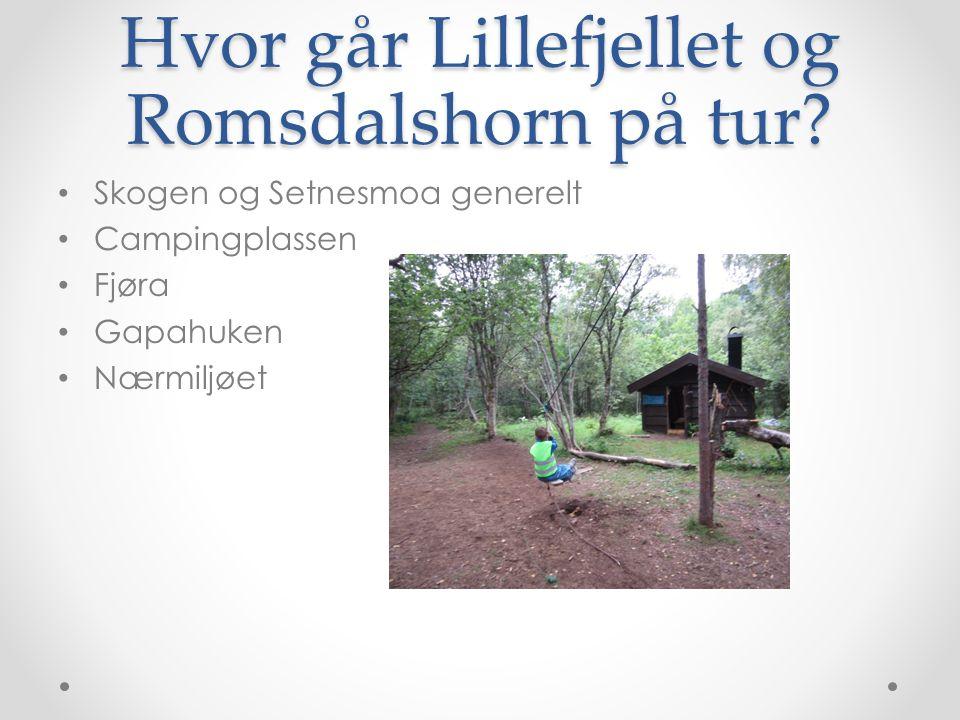 Hvor går Lillefjellet og Romsdalshorn på tur.
