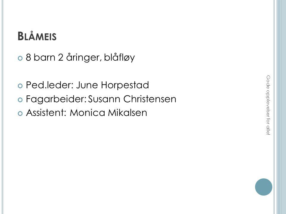S PURVEN 11 barn – 1-2 åringer, blåfløy Ped.leder: Benedicte Vik Reime Ped.leder: Aina Egholm Fagarbeider: Christine Søbye (Tintin) Assistent: Jeanette Sjødin Gode opplevelser for alle!