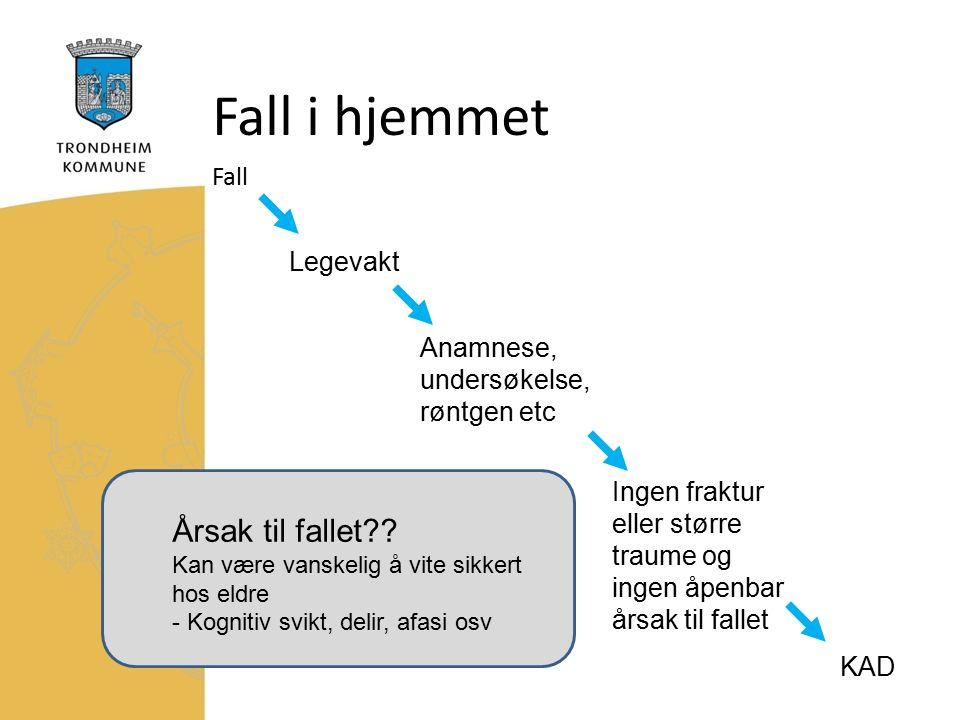Fall i hjemmet Fall Legevakt Anamnese, undersøkelse, røntgen etc Ingen fraktur eller større traume og ingen åpenbar årsak til fallet KAD Årsak til fallet .
