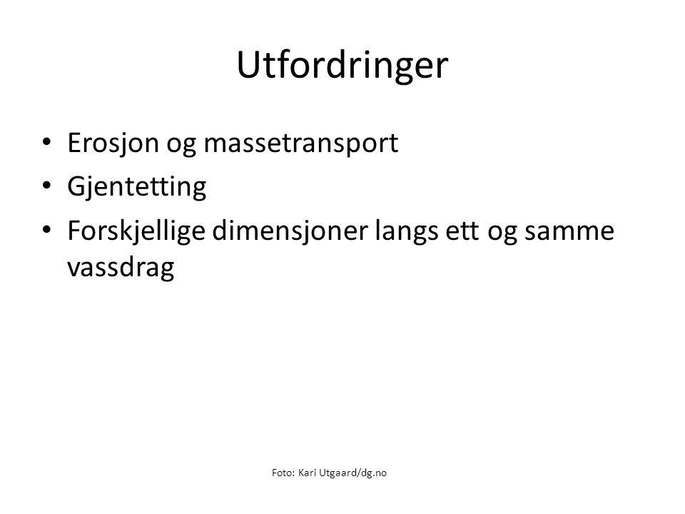 Utfordringer Erosjon og massetransport Gjentetting Forskjellige dimensjoner langs ett og samme vassdrag Foto: Kari Utgaard/dg.no