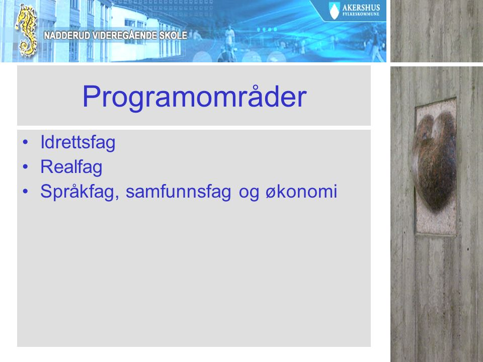 Programområder Idrettsfag Realfag Språkfag, samfunnsfag og økonomi