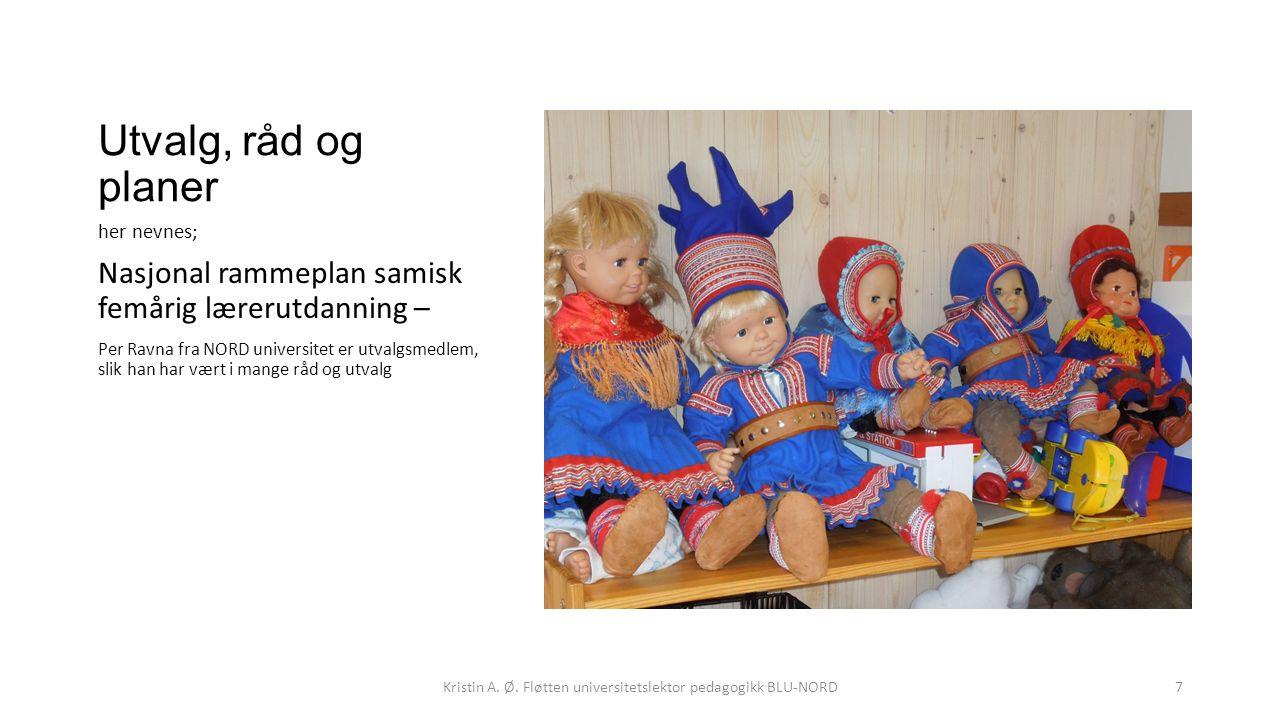 Utvalg, råd og planer her nevnes; Nasjonal rammeplan samisk femårig lærerutdanning – Per Ravna fra NORD universitet er utvalgsmedlem, slik han har vært i mange råd og utvalg Kristin A.