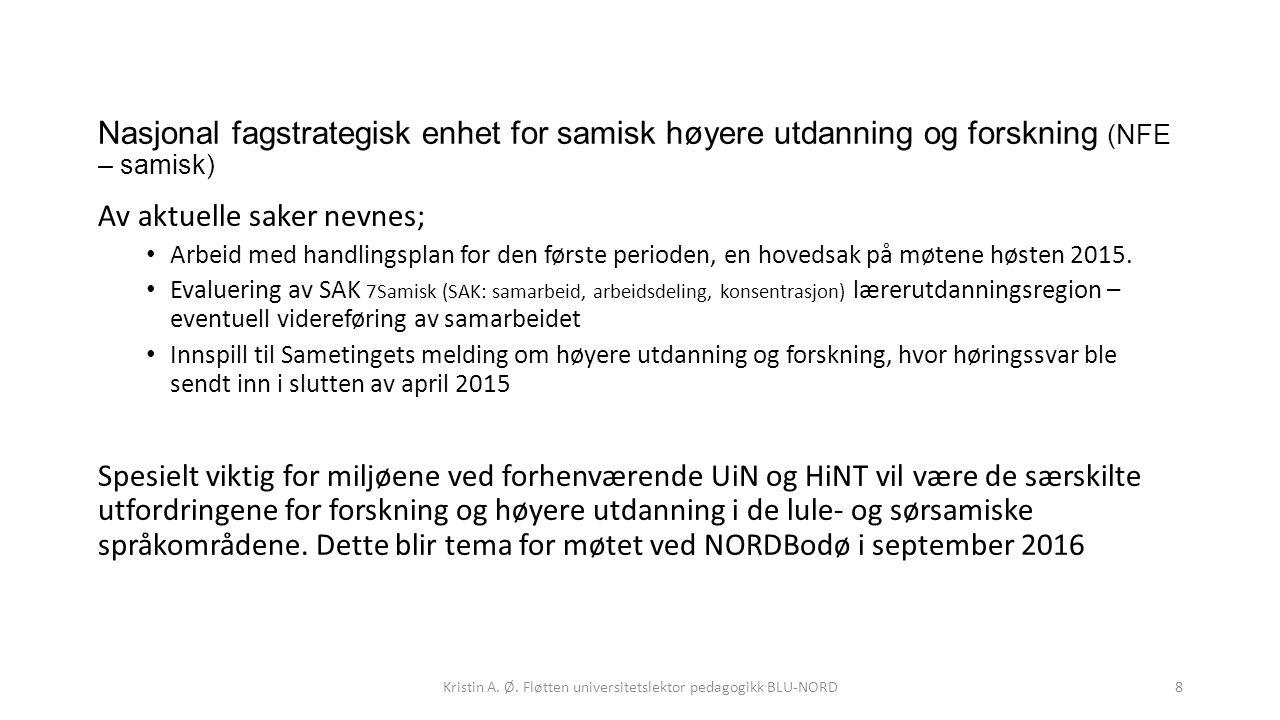 Nasjonal fagstrategisk enhet for samisk høyere utdanning og forskning (NFE – samisk) Av aktuelle saker nevnes; Arbeid med handlingsplan for den første
