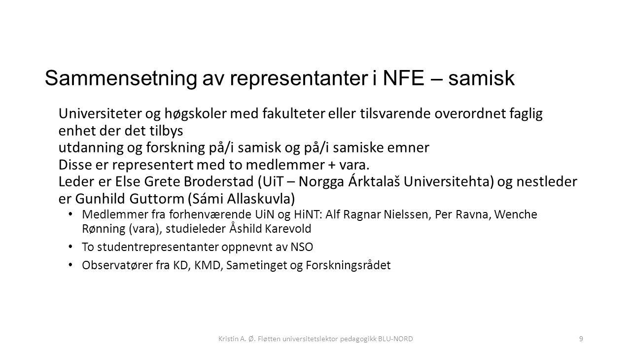 Sammensetning av representanter i NFE – samisk Universiteter og høgskoler med fakulteter eller tilsvarende overordnet faglig enhet der det tilbys utda