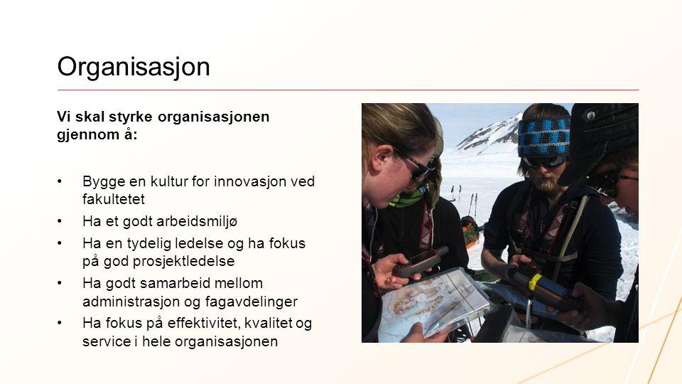 Organisasjon Vi skal styrke organisasjonen gjennom å: Bygge en kultur for innovasjon ved fakultetet Ha et godt arbeidsmiljø Ha en tydelig ledelse og h