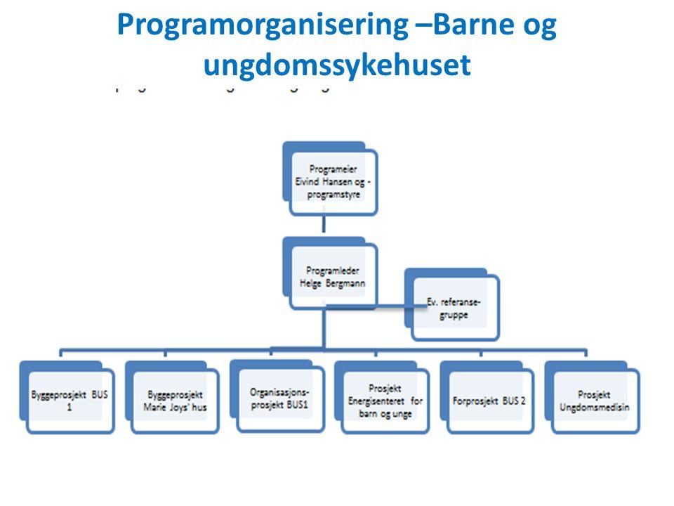 Programorganisering –Barne og ungdomssykehuset