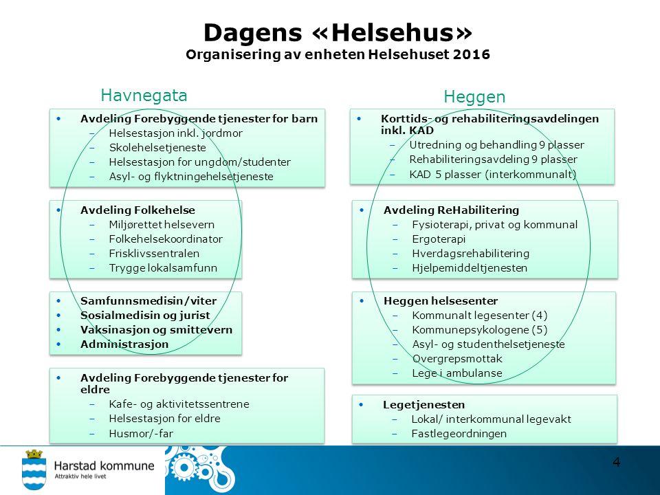 Dagens «Helsehus» Organisering av enheten Helsehuset 2016 4 Avdeling Forebyggende tjenester for barn –Helsestasjon inkl.