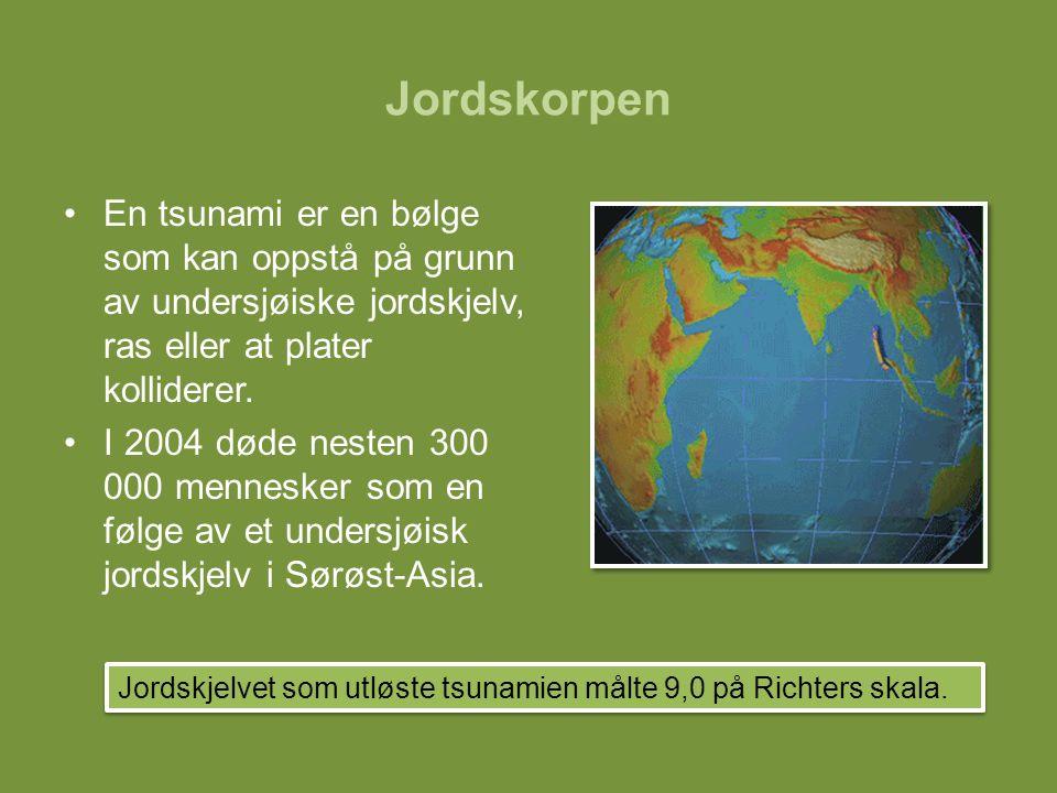 Jordskorpen En tsunami er en bølge som kan oppstå på grunn av undersjøiske jordskjelv, ras eller at plater kolliderer.