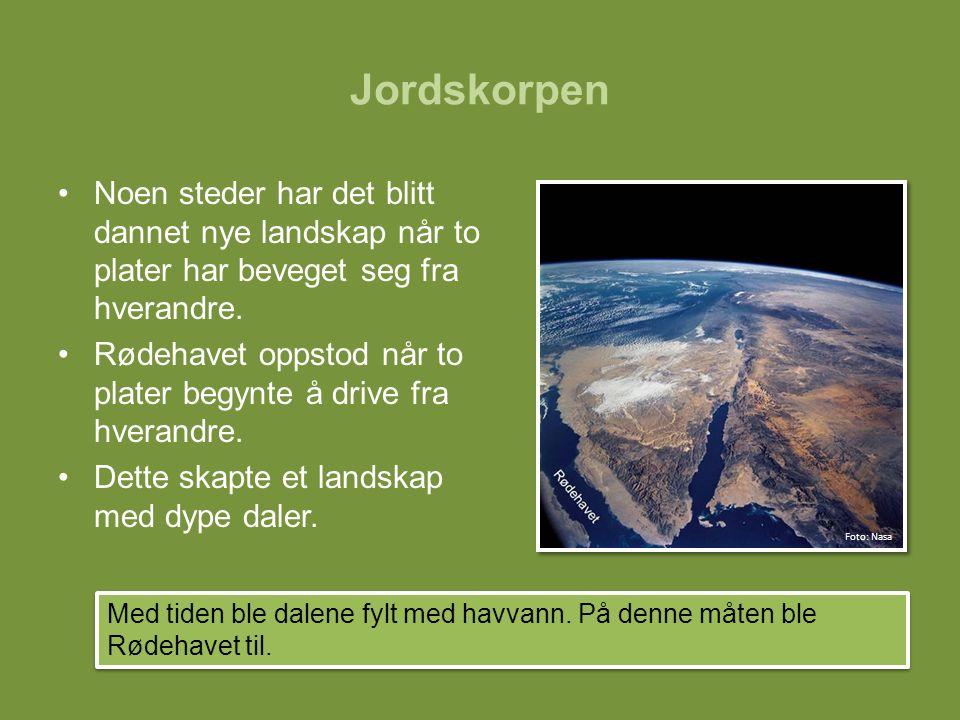 Jordskorpen Noen steder har det blitt dannet nye landskap når to plater har beveget seg fra hverandre.