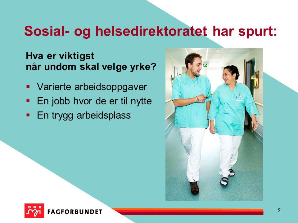 5 Sosial- og helsedirektoratet har spurt: Hva er viktigst når undom skal velge yrke.