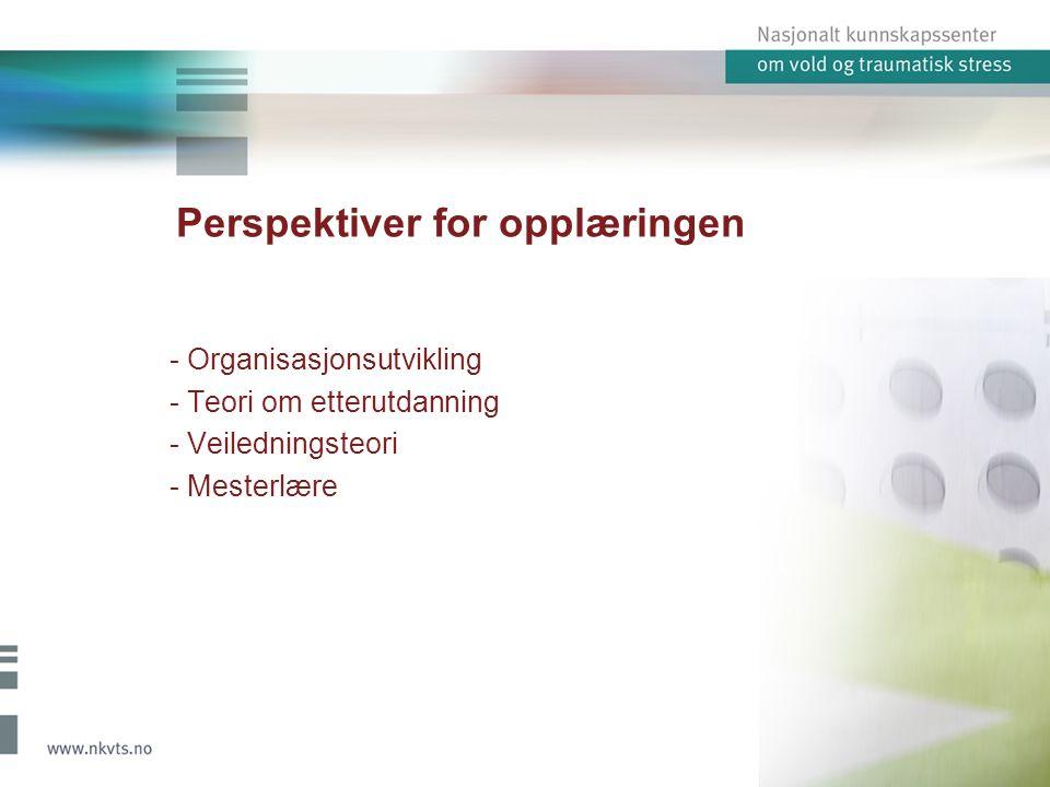 Perspektiver for opplæringen - Organisasjonsutvikling - Teori om etterutdanning - Veiledningsteori - Mesterlære