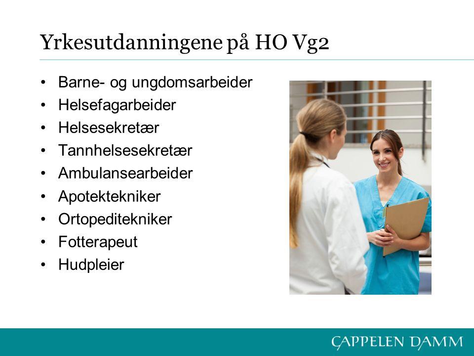 Yrkesutdanningene på HO Vg2 Barne- og ungdomsarbeider Helsefagarbeider Helsesekretær Tannhelsesekretær Ambulansearbeider Apotektekniker Ortopeditekniker Fotterapeut Hudpleier
