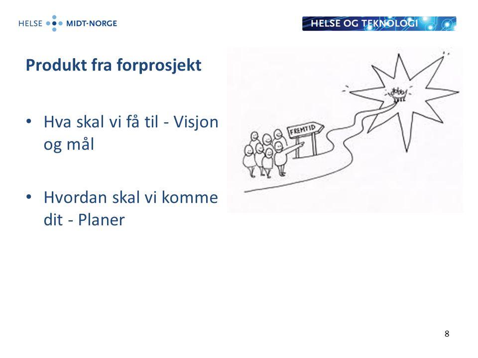 Produkt fra forprosjekt Hva skal vi få til - Visjon og mål Hvordan skal vi komme dit - Planer 8