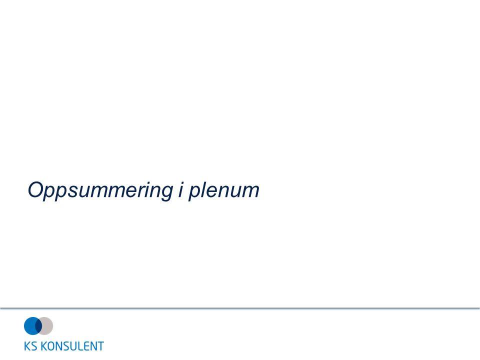 Oppsummering i plenum