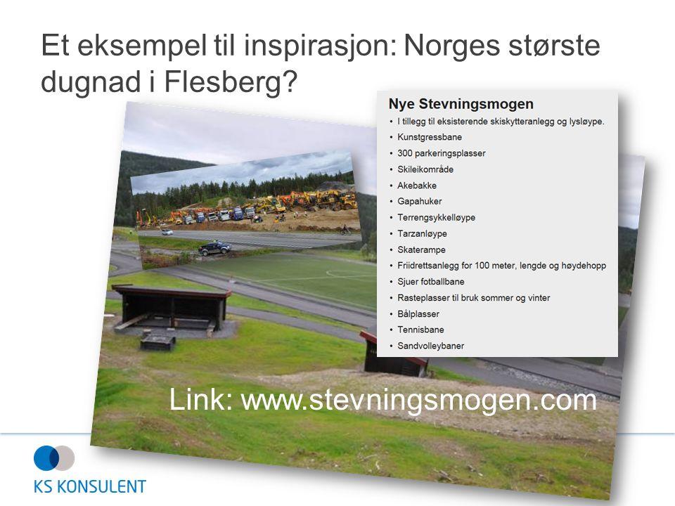 Et eksempel til inspirasjon: Norges største dugnad i Flesberg? Link: www.stevningsmogen.com