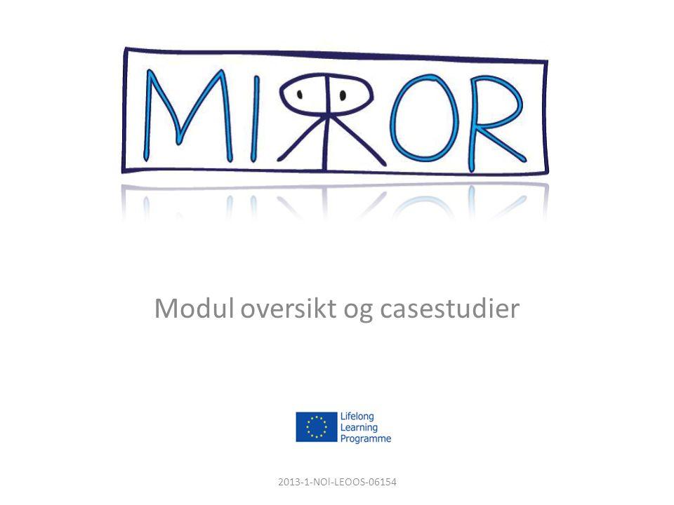 2013-1-NOl-LEOOS-06154 Modul oversikt og casestudier