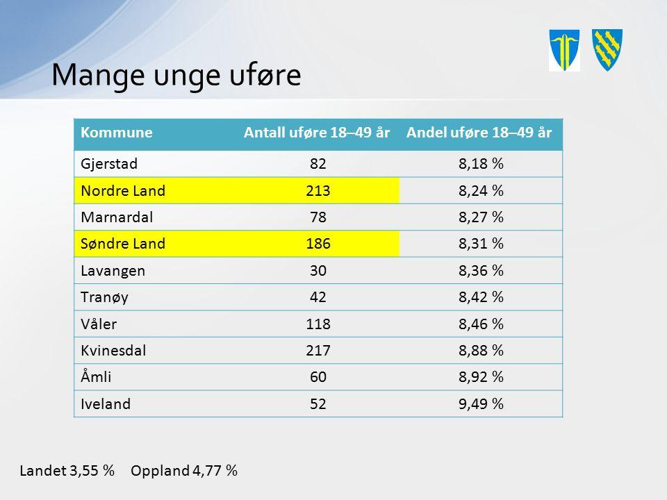 Mange unge uføre KommuneAntall uføre 18–49 årAndel uføre 18–49 år Gjerstad828,18 % Nordre Land2138,24 % Marnardal788,27 % Søndre Land1868,31 % Lavange