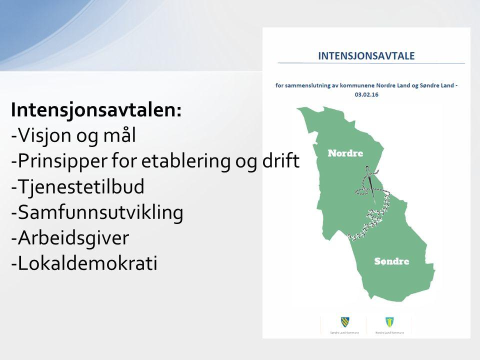 Intensjonsavtalen: -Visjon og mål -Prinsipper for etablering og drift -Tjenestetilbud -Samfunnsutvikling -Arbeidsgiver -Lokaldemokrati