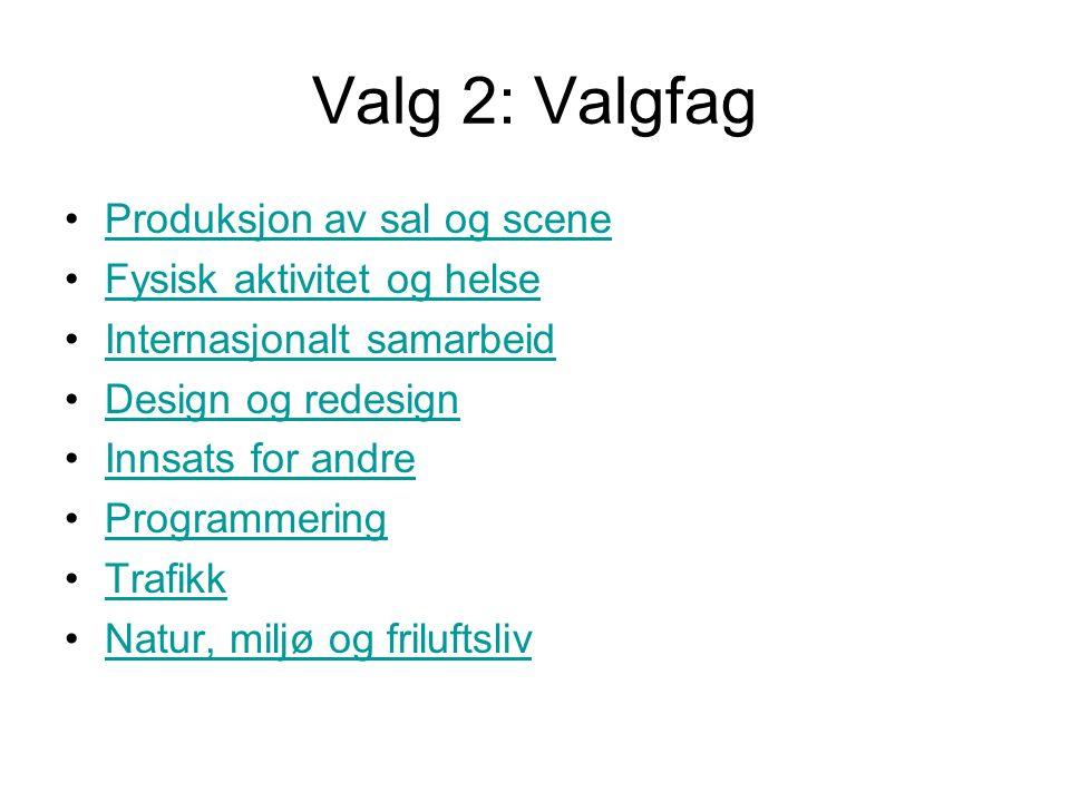 Valg 2: Valgfag Produksjon av sal og scene Fysisk aktivitet og helse Internasjonalt samarbeid Design og redesign Innsats for andre Programmering Trafikk Natur, miljø og friluftsliv