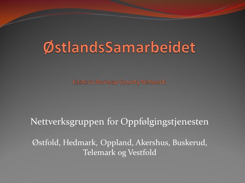 Nettverksgruppen for Oppfølgingstjenesten Østfold, Hedmark, Oppland, Akershus, Buskerud, Telemark og Vestfold