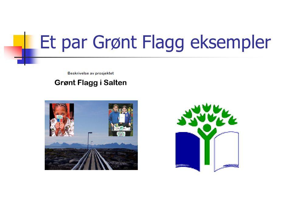 Et par Grønt Flagg eksempler