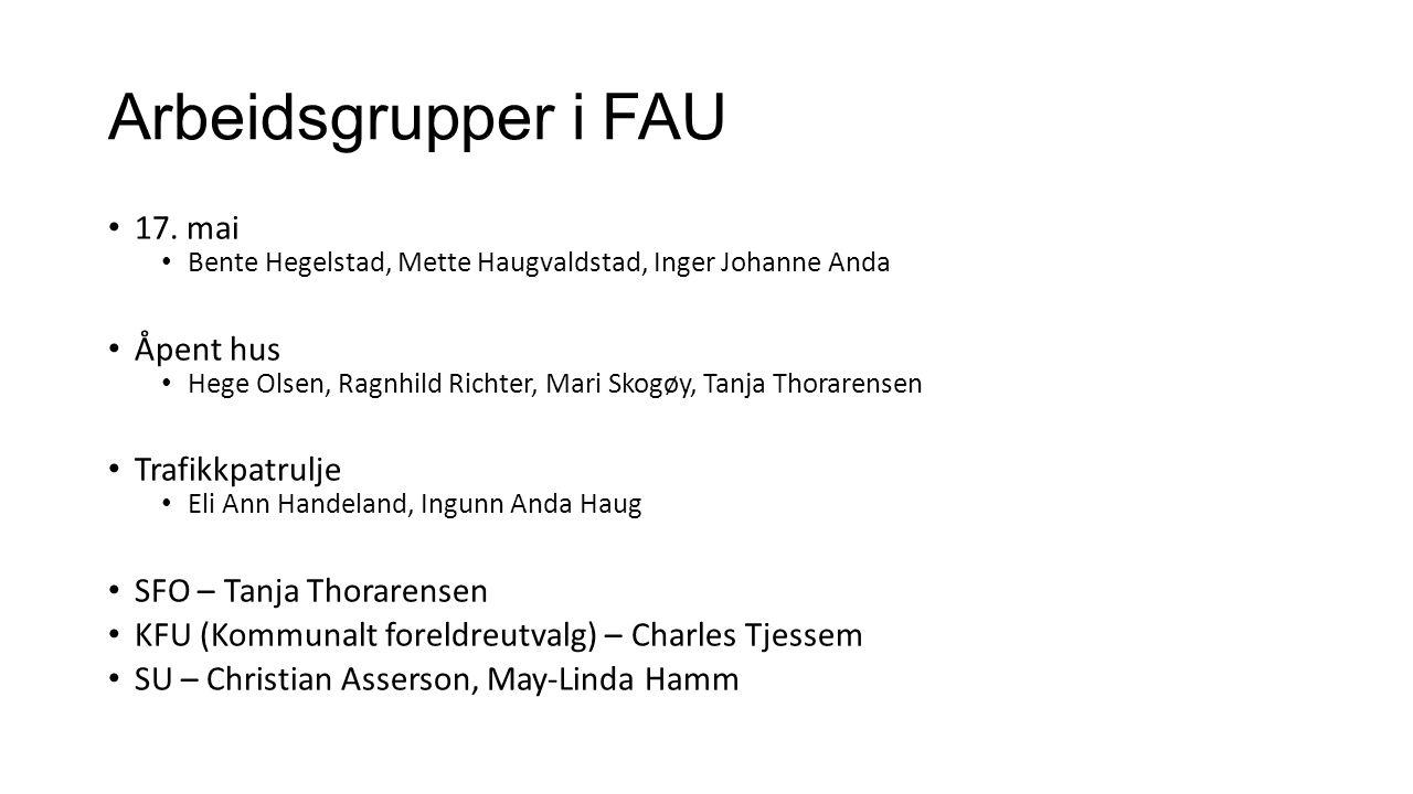 Arbeidsgrupper i FAU 17.