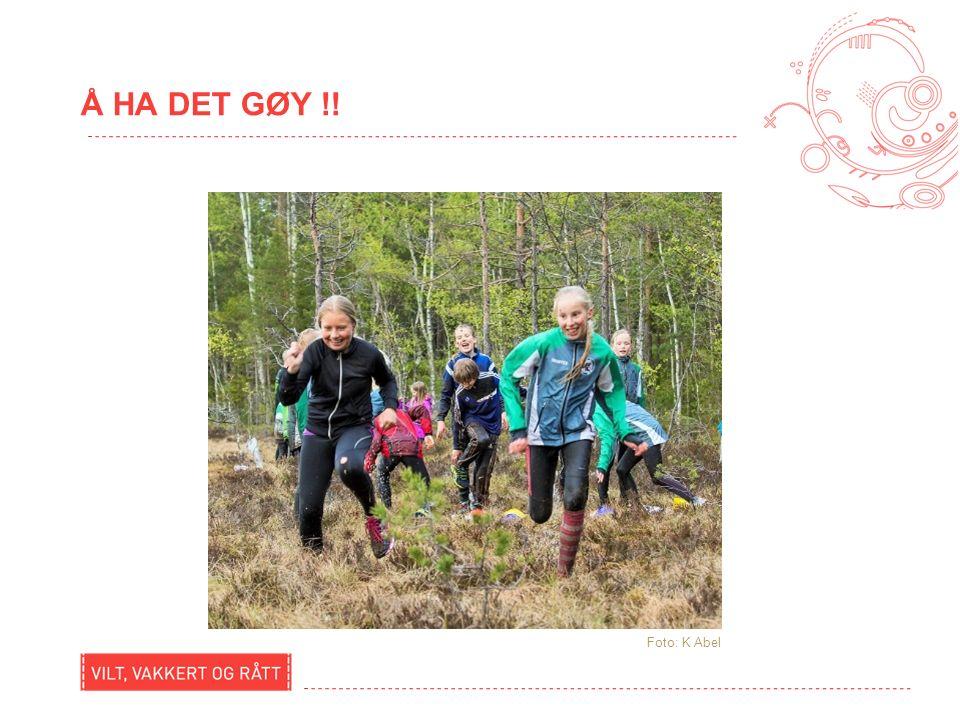AKTIVITETSPLAN GOL, VÅR 2016 ( 8-12 ÅR) Dato / tidAktivitet Alders- gruppe Frammøtested 11.