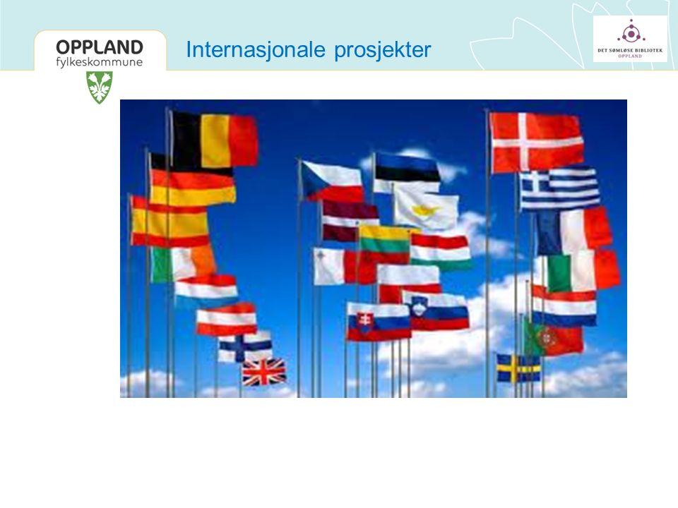 Internasjonale prosjekter