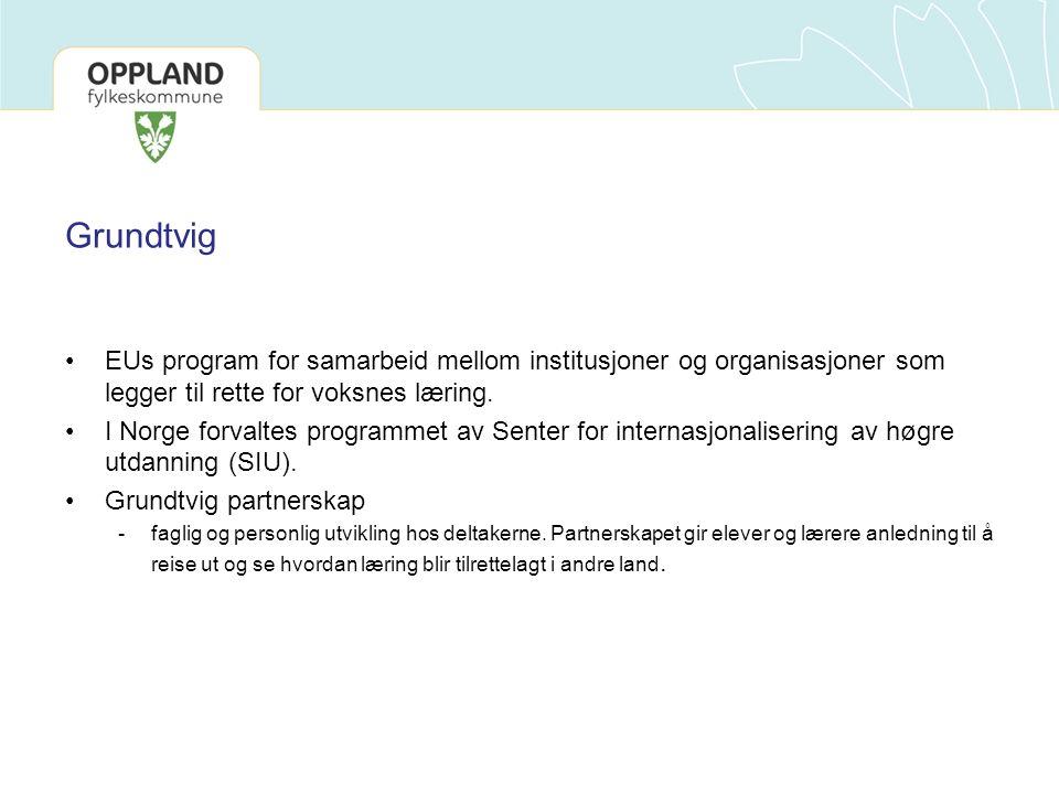 Grundtvig EUs program for samarbeid mellom institusjoner og organisasjoner som legger til rette for voksnes læring.