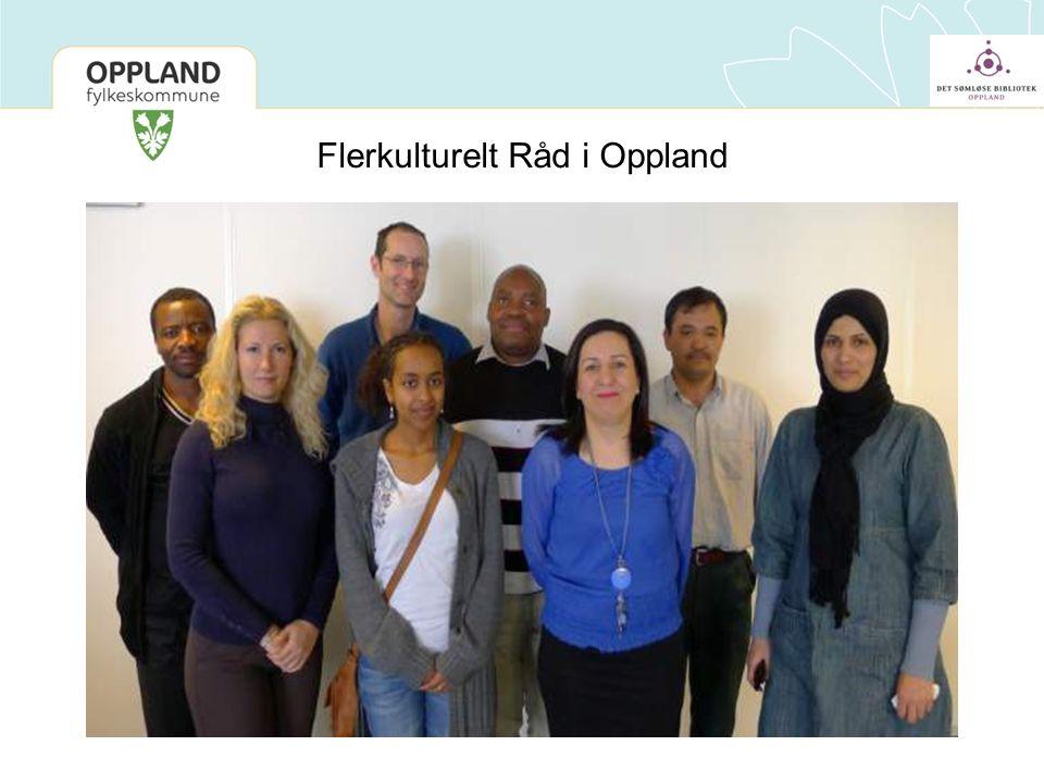 Flerkulturelt Råd i Oppland