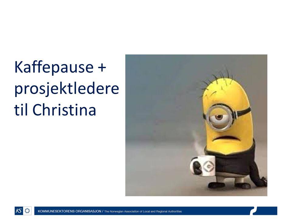 Kaffepause + prosjektledere til Christina