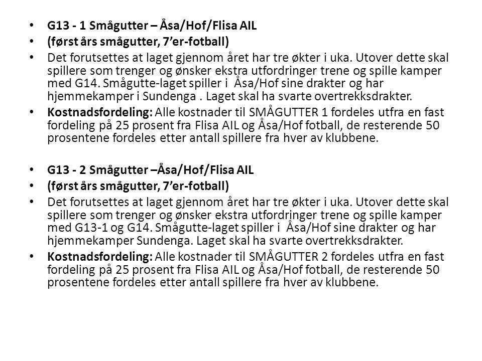G13 - 1 Smågutter – Åsa/Hof/Flisa AIL (først års smågutter, 7'er-fotball) Det forutsettes at laget gjennom året har tre økter i uka.
