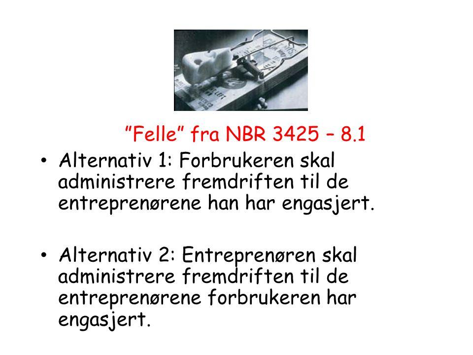 """""""Felle"""" fra NBR 3425 – 8.1 Alternativ 1: Forbrukeren skal administrere fremdriften til de entreprenørene han har engasjert. Alternativ 2: Entreprenøre"""
