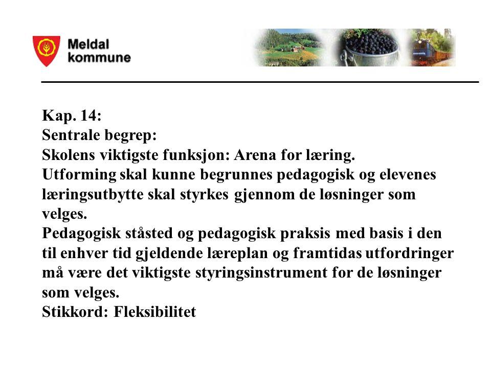 Kap. 14: Sentrale begrep: Skolens viktigste funksjon: Arena for læring.