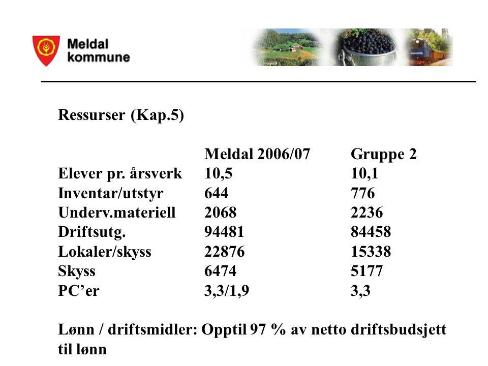 Ressurser (Kap.5) Meldal 2006/07Gruppe 2 Elever pr.