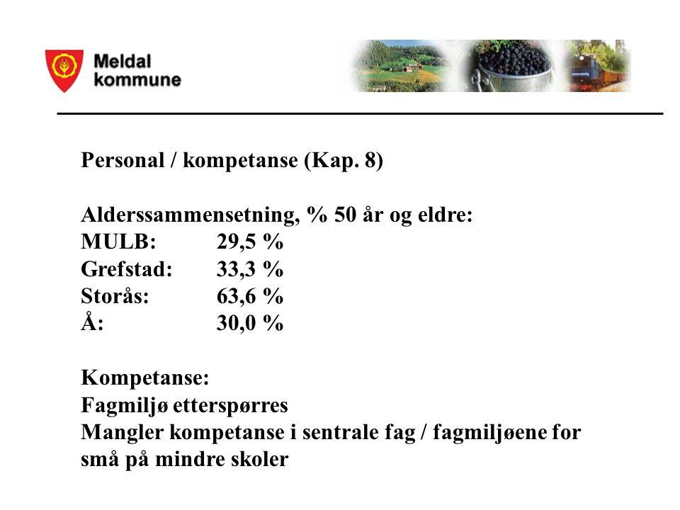 Personal / kompetanse (Kap.