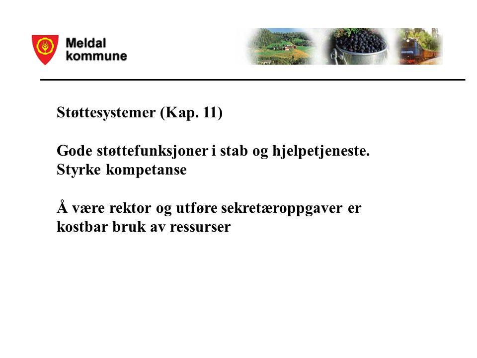 Støttesystemer (Kap. 11) Gode støttefunksjoner i stab og hjelpetjeneste.