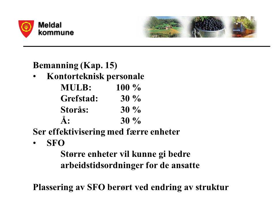 Bemanning (Kap.