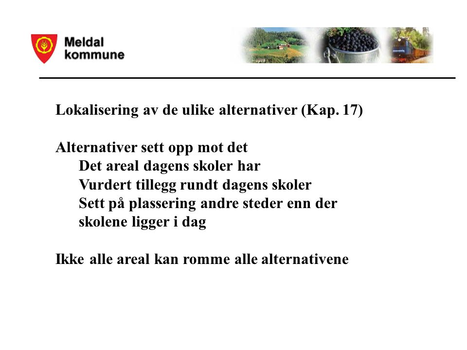 Lokalisering av de ulike alternativer (Kap.
