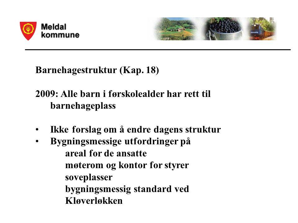Barnehagestruktur (Kap.