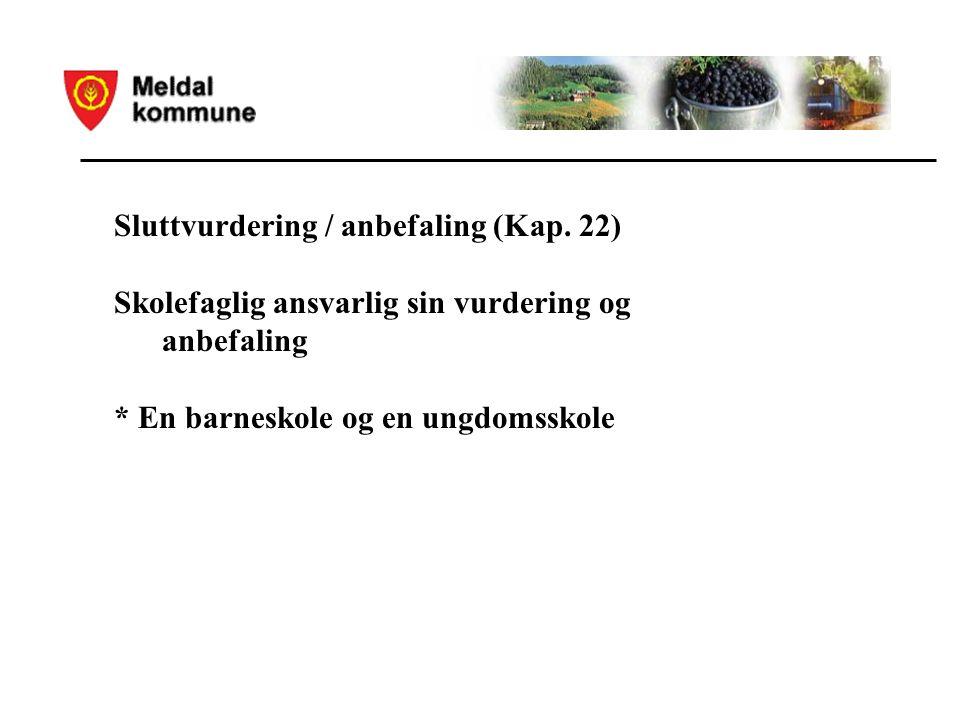 Sluttvurdering / anbefaling (Kap.