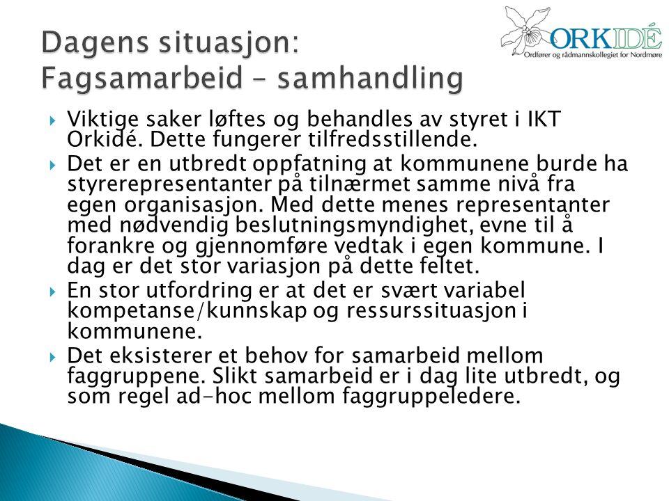  Viktige saker løftes og behandles av styret i IKT Orkidé.