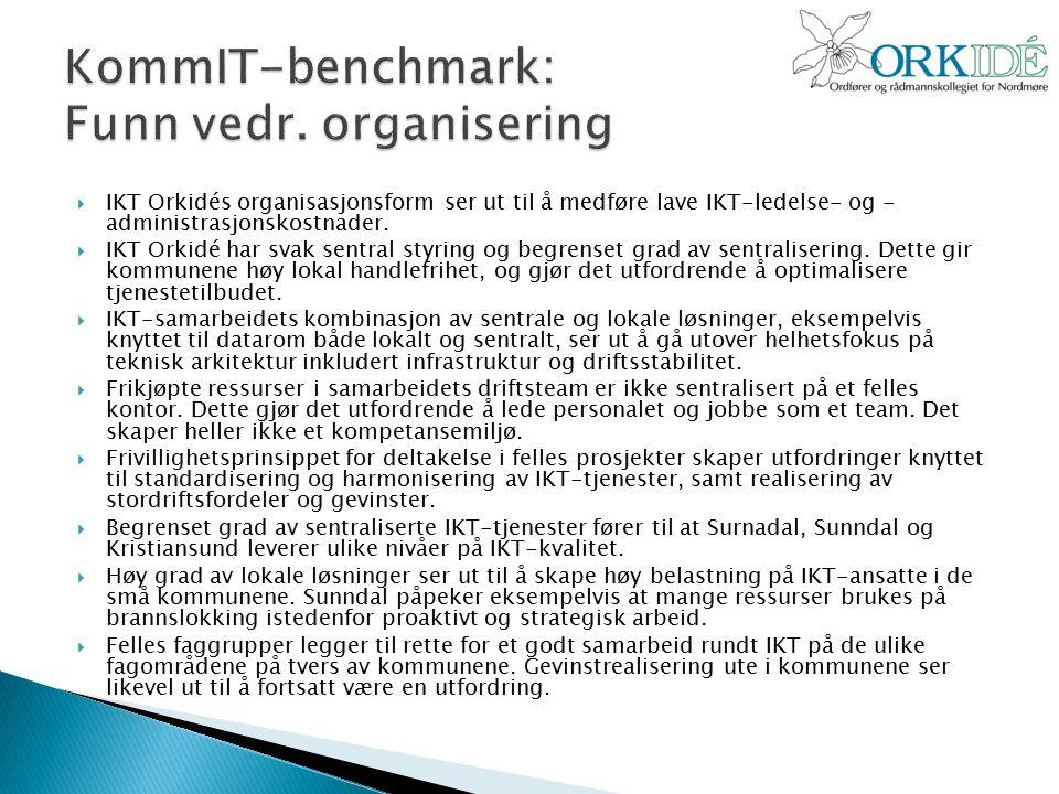  IKT Orkidés organisasjonsform ser ut til å medføre lave IKT-ledelse- og - administrasjonskostnader.