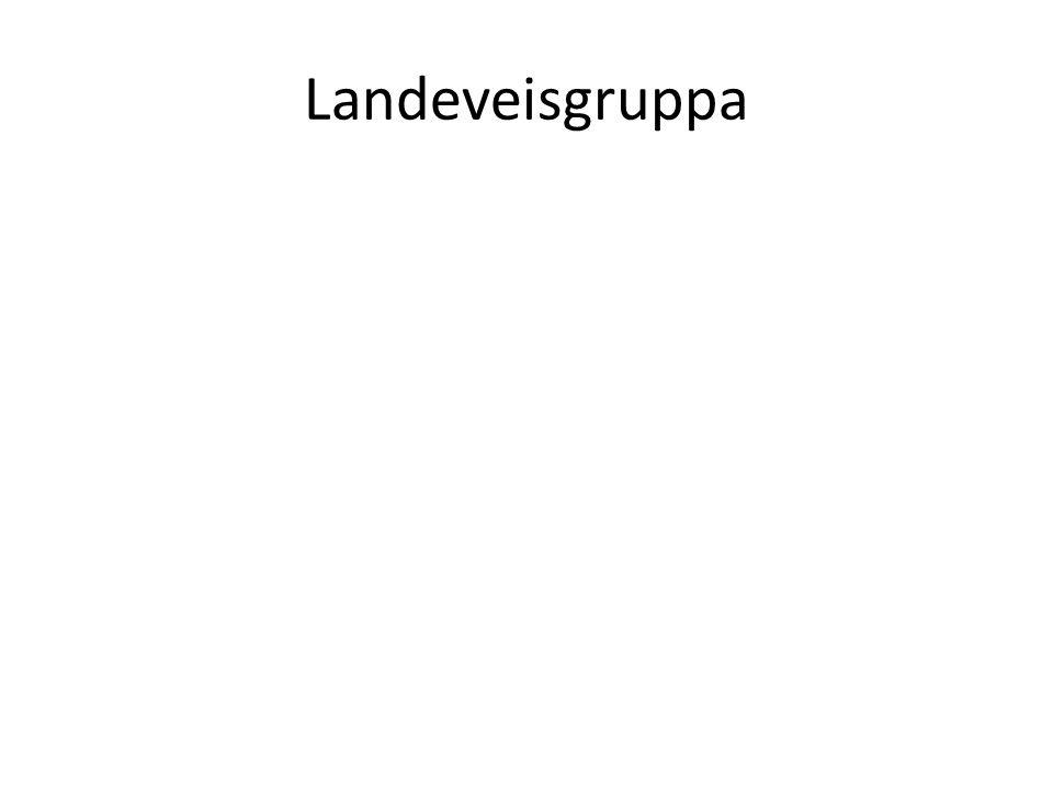 Landeveisgruppa