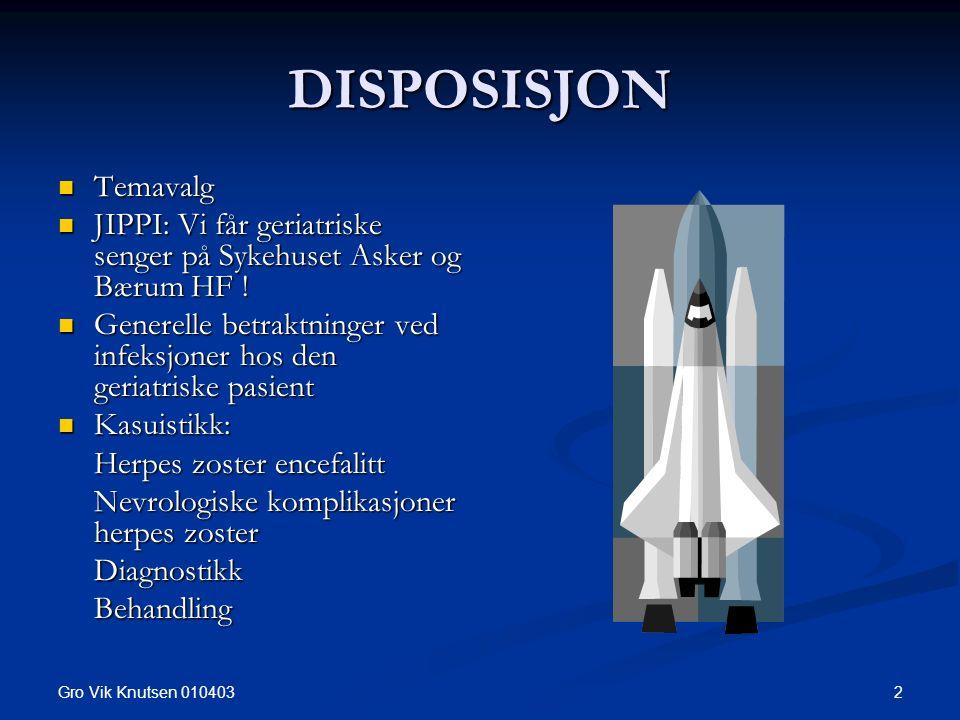 Gro Vik Knutsen 010403 2 DISPOSISJON Temavalg Temavalg JIPPI: Vi får geriatriske senger på Sykehuset Asker og Bærum HF .