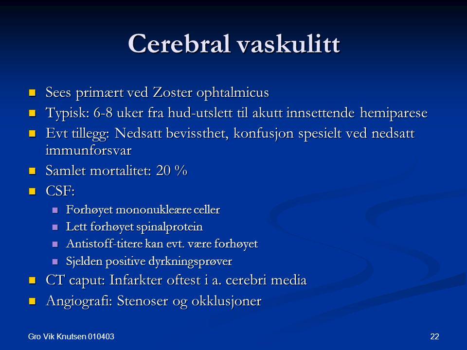 Gro Vik Knutsen 010403 22 Cerebral vaskulitt Sees primært ved Zoster ophtalmicus Sees primært ved Zoster ophtalmicus Typisk: 6-8 uker fra hud-utslett